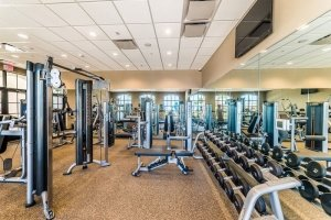 commercial fitness gym